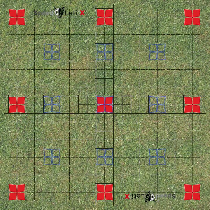 SpeedLetix Designvorschlag Grass